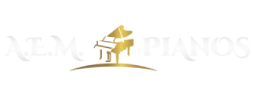 transporte do piano - A.E.M. Pianos