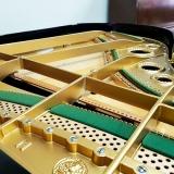 empresas que fazem conserto de piano de cauda Carandiru