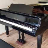 locação de piano de cauda pequeno Socorro