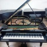 piano acústico antigo de cauda valores Parque Ibirapuera
