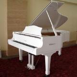 piano cauda branco orçamento Vila Guilherme