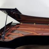 piano cauda longa orçamento Parque Anhembi