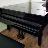 pianos de cauda pretos Luz